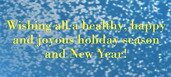 NY Holidays Banner