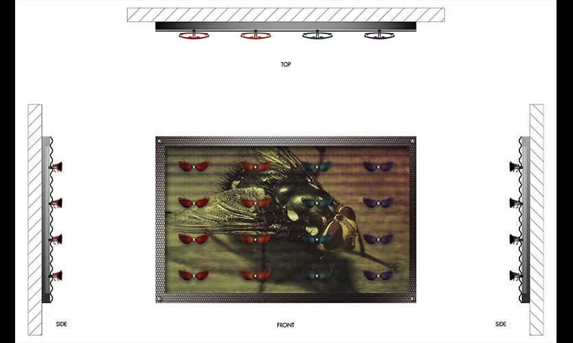 Plan, Black Flys Concept Store, Jonathan Deepe