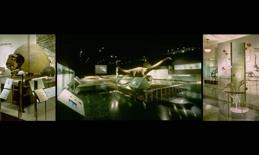 Exhibit Design, Fossils Hall, American Museum of Natural History, Ralph Appelbaum Associates