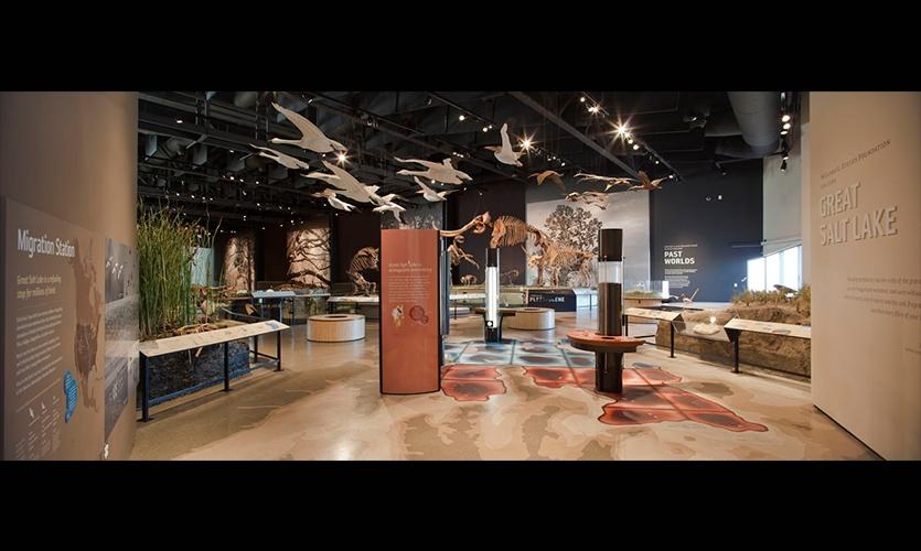 Coupons natural history museum utah
