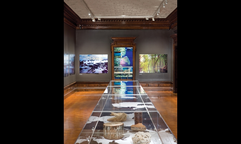 Hoping to attract an urban, design-savvy audience, The Nature Conservancy chose the Cooper-Hewitt, National Design Museum as the venue for its exhibit.
