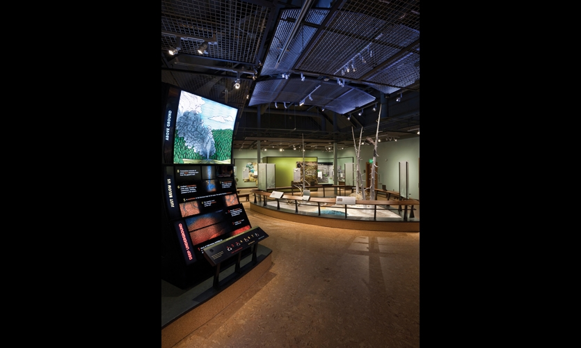 "To inspire ""family learning,"" a variety of learning methods are incorporated in the exhibits, from interactive levers to dioramas and touchscreens."