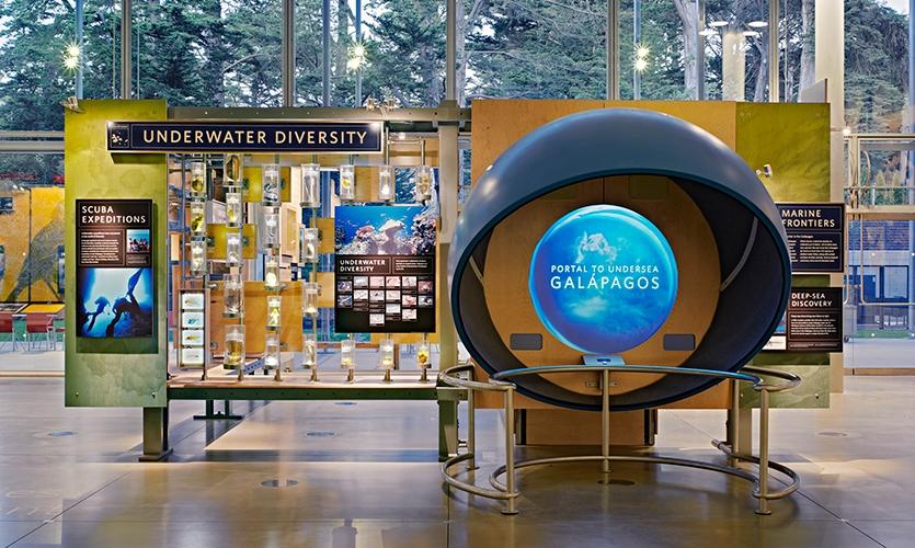 Portal to Undersea Galapagos, California Academy of Sciences Exhibits, California Academy of Sciences, Volume Inc., Cinnabar Inc.