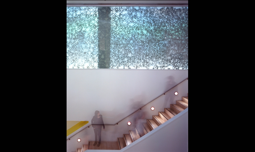 Stairwell Graphics, Ecotopia, International Center of Photography, Matter Practice Architecture, MGMT. Design