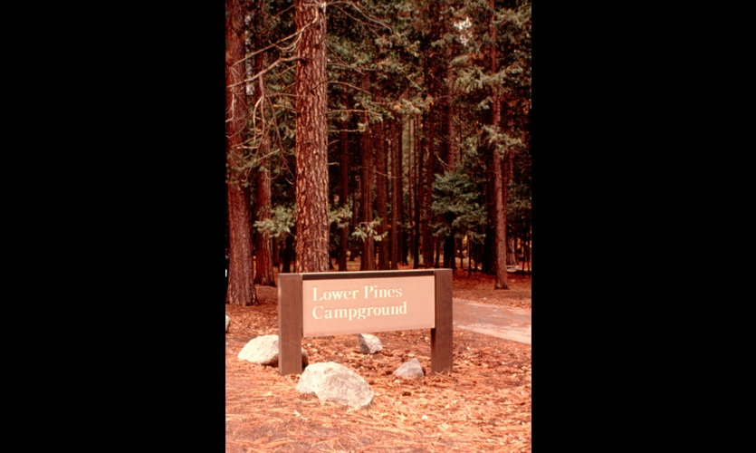 Lower Pines Campground, The NPS UniGuide Program, National Park Service, Meeker & Associates
