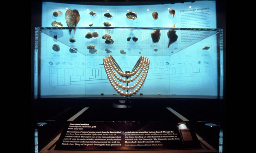 Display, Pearls, American Museum of Natural History