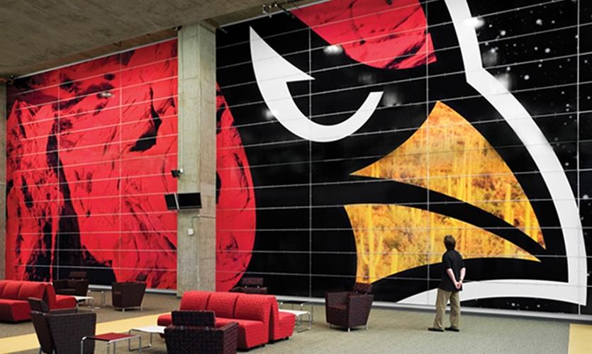 Large Cardinal Graphic, Arizona Cardinals Stadium, Arizona Sports & Tourism Authority, Pentagram, Entro Communications