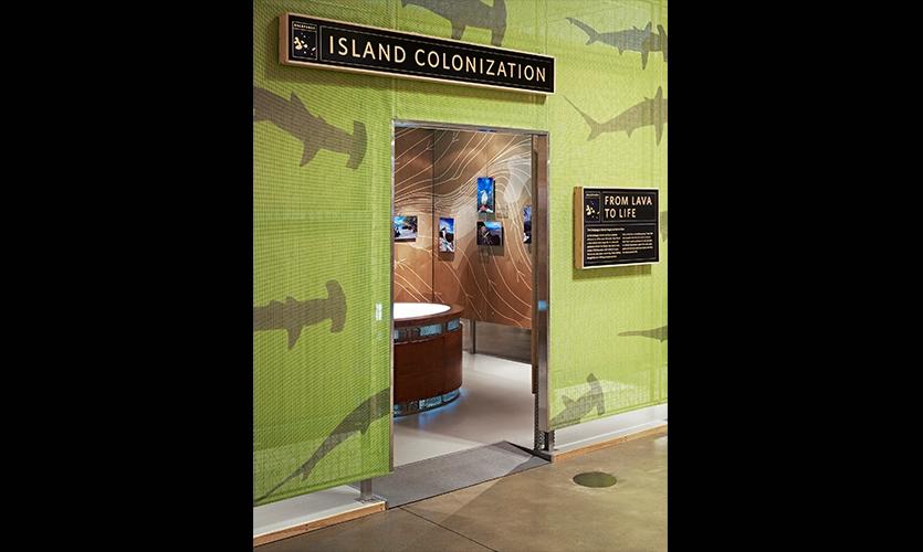 Island Colonization, California Academy of Sciences Exhibits, California Academy of Sciences, Volume Inc., Cinnabar Inc.