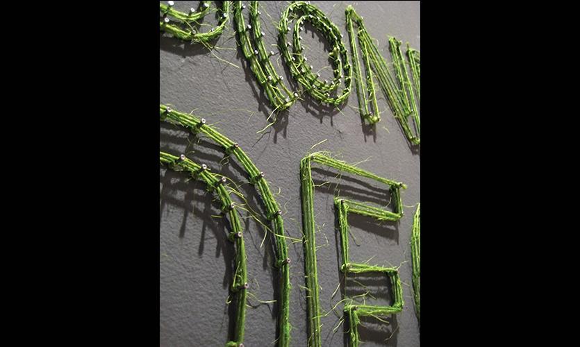Close-up, 2009 AIGA Bone Show, AIGA Boston Chapter, Brandon Bird, Jeff Stammen, Christine Lefebvre