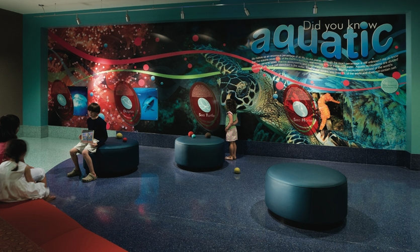 Waiting Area, Palmetto Health Children's Hospital Wayfinding and Graphics, Stanley Beaman & Sears