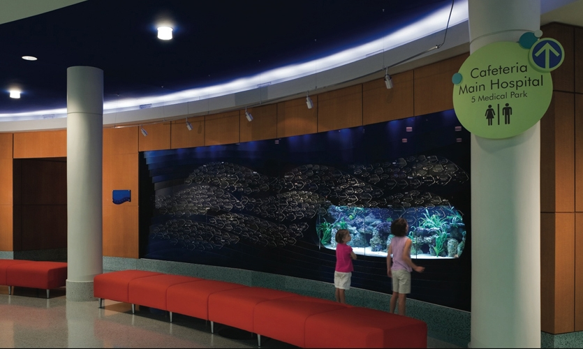 Wall Graphics, Palmetto Health Children's Hospital Wayfinding and Graphics, Stanley Beaman & Sears
