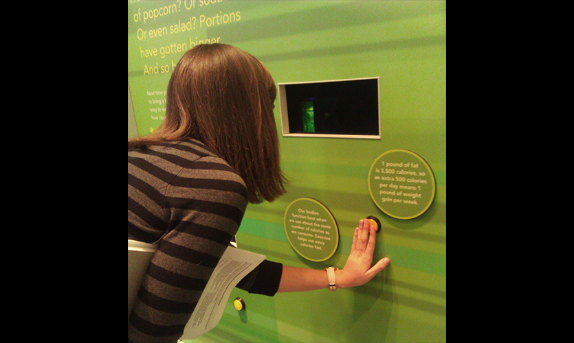 Figure 3: Museums as Experiential Learning Labs, Lisa Fontaine