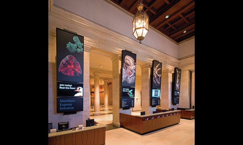 In the renovated lobby, a series of three-paneled graphic totems feature the heroic specimen photographs central to the museum's new brand.