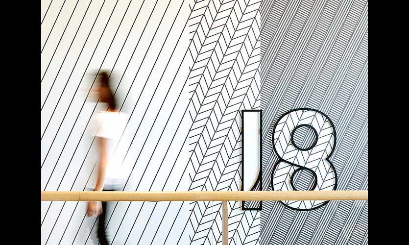 Feature wall graphics act as wayfinding cues and placemaking backdrops.