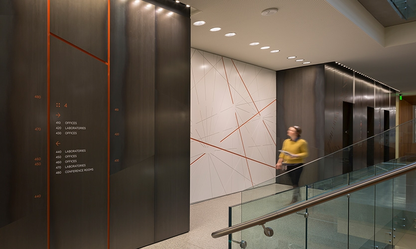 Floor levels are coded with routed accents in colors similar to those used by researchers in marking areas of the brain.