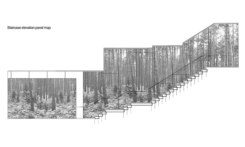 Creating a story to describe the experience of the staircase was vital to translating a portrait of the forest into a full-scale experience.
