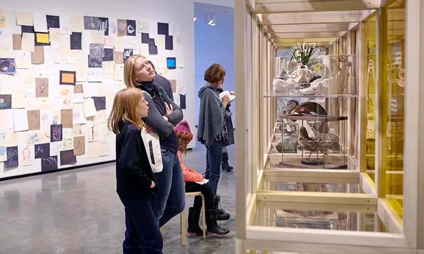 Visitors looking at the natural history specimens. Behind them, participants hang their drawings on a dedicated display wall.