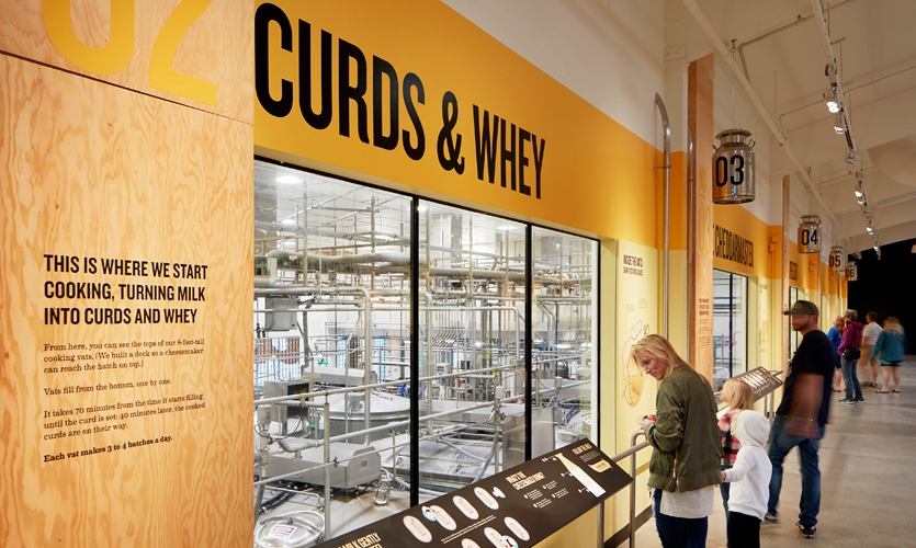 The viewing gallery offers a look into the real-life cheesemaking process. Illustrations and bold graphics help visitors understand what each cheesemaker is doing in the workspace below.