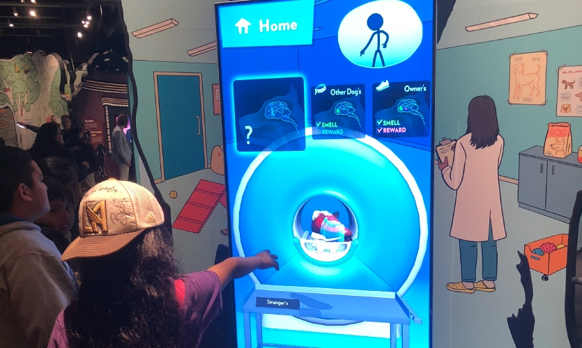 Dr. Burns helped Unified Field to develop the exhibit and provided voice over for the experience. (Image: girl uses interactive screen)