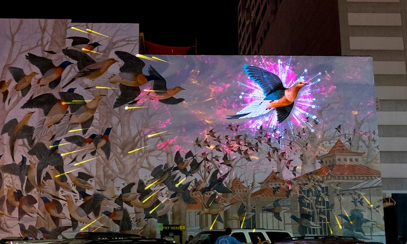 """""""For the Birds"""" by Foster & Flux"""