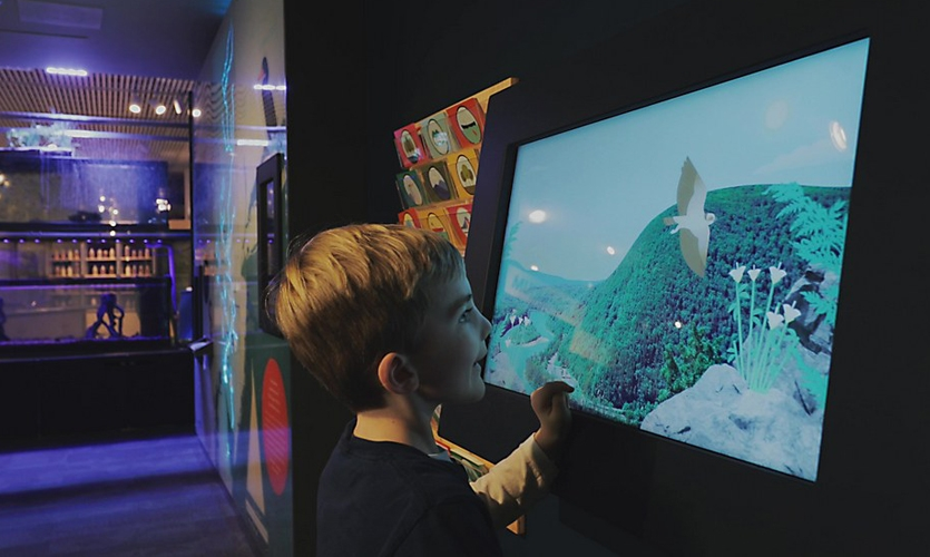 The suite of four digital interactives successfully teaches kids about the science behind the river's health through engaging activities and vibrant animations.