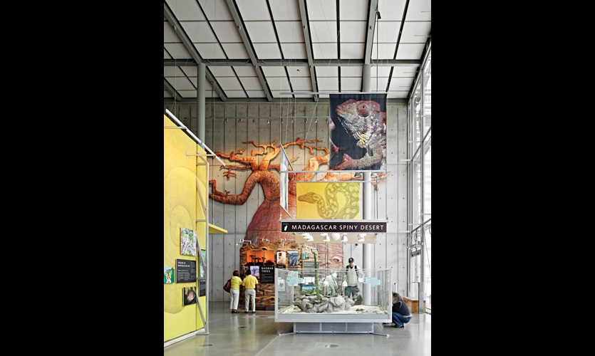 Cinnabar designed a flexible kit of parts that can change as the museum content evokes. Freestanding exhibits are built around a steel post anchored with one central, earthquake-proof mounting bolt on the node of the 8-ft.-square floor grid.