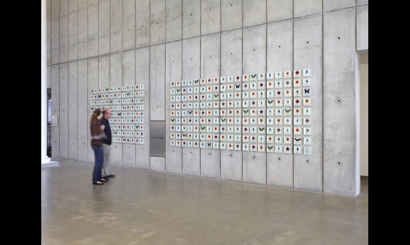 To thank the museum's top donors, Studio Hinrichs conceived a specimen wall that connects the Academy's research and collections with those who make them possible. Giving categories are represented by different species of butterflies, starfish, beetles, and poppies, but the specimens were mounted randomly, not according to giving levels. (Photo: © Tim Griffith)