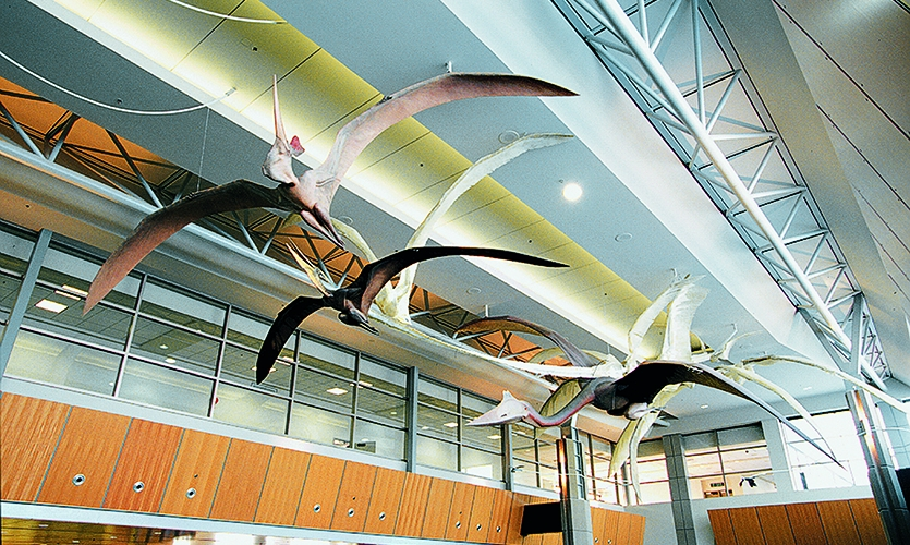 Calgary Airport Themeworks: Transformations, Brian Cooley