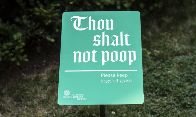 At New York's Cathedral of St. John the Divine, a popular dog-walking area, Pentagram created messaging that is on-brand but not offputting.
