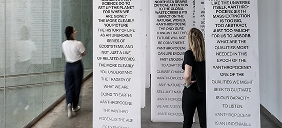 Anthropo—Scenes: Installation, 2020