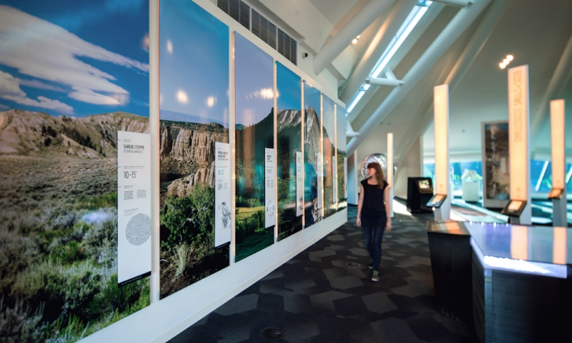 The exhibit was designed to remind visitors they are not just observers of nature, but part of it---interconnected and invested.