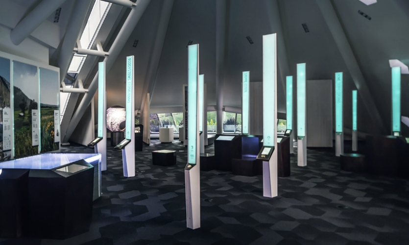 A collection of tall, slim interactive pylons recalls an aspen glade.