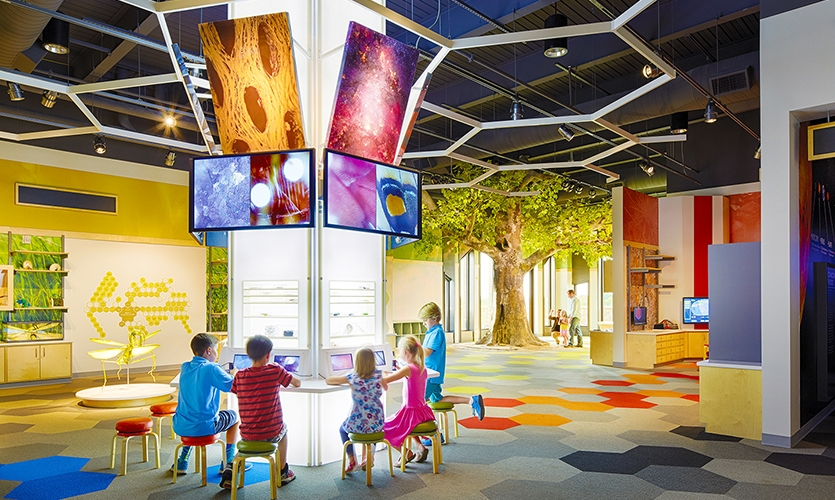 On the second floor, there is another permanent, hands-on educational area for children, which is the second largest program area in the museum—the Discovery Room