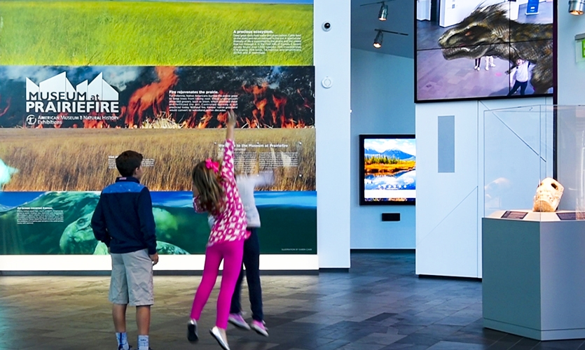 Using a 3D game engine, visitors navigate through a series of questions and activities, before sending their fully-rendered 3D creation to another camera-enabled screen, where friends and visitors can interact with the fun creatures