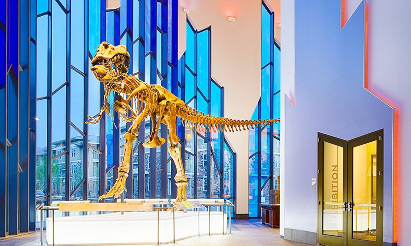 The Grand Hall's free-to-the-public exhibits and interactives designed and fabricated by Dimensional Innovations, include a Tyrannosaurus Rex skeleton and an augmented reality dinosaur experience