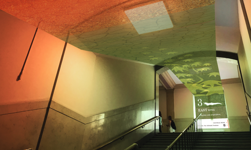 Stairwell graphics level 3  (work of Chang hyun Lee)