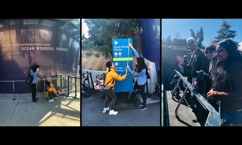 FIT Graduate Exhibition and Experience Design students conducted site surveys at NY Aquarium