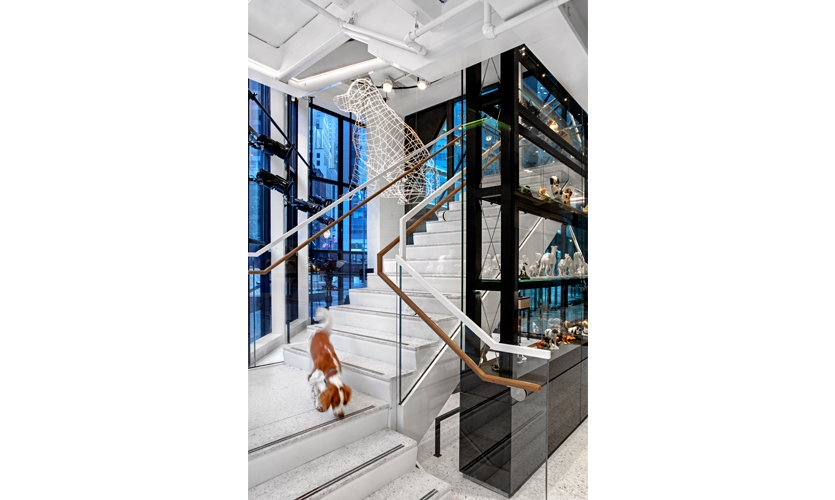 Beside the stair, an eight-foot-tall digitally modeled wireframe Labrador Retriever fabricated by Yellow Goat Design hangs from the ceiling, illuminated by color-changing LEDs to give a dynamic presence. (image: light sculpture above stair)