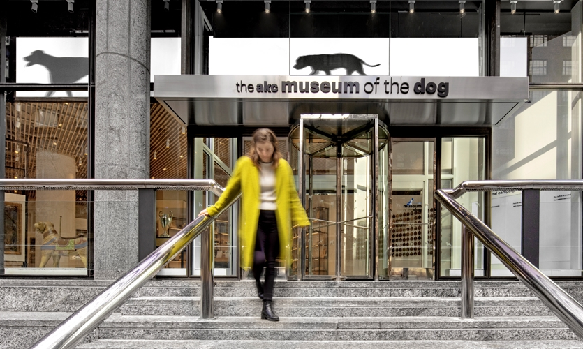 The first of these digital touchpoints is reached from the street, where Gensler placed a 60-foot-wide band—a digital art installation. (image: facade with digital installation featuring dogs)