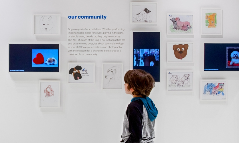 Young visitors' creations are documented over time. (image: children's drawings of dogs)