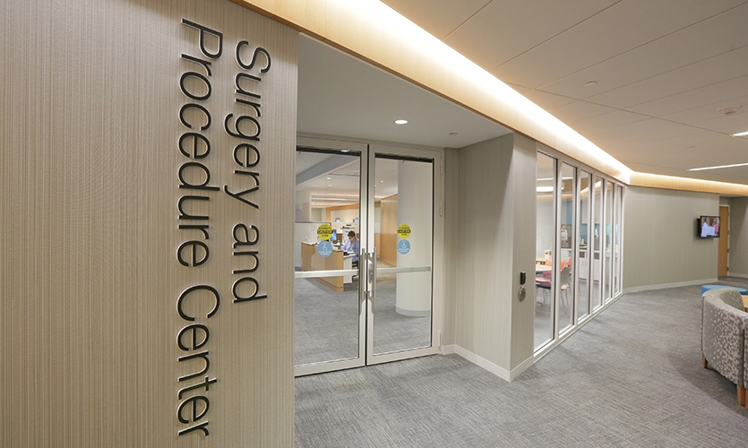 The identification signage for departments, as well as elements for identifying levels, entries, or building amenities is suggestive of bold retail signage in line with the client's goals.