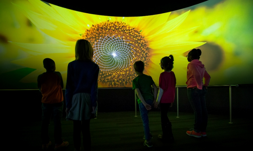 Numbers in Nature is the Museum of Science and Industry Chicago's newest permanent exhibit.
