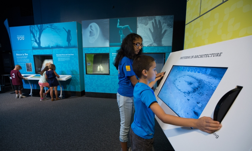 The pattern discovery area invites visitors to spot the patterns in the world around them using interactive tools like a Golden Ratio magic mirror, 3-D models and musical instruments.