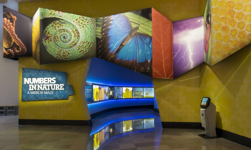 The design concept is based on mathematical patterns than appear in nature, and nearly all of the exhibit's dimensionalities are based on these patterns.