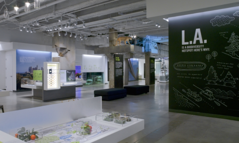 Exhibit design was by Gallagher & Associates. KBDA was responsible for graphic design.