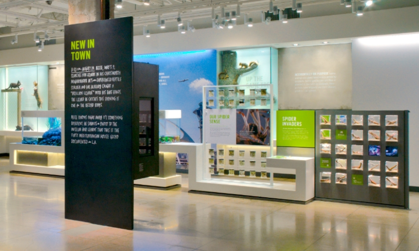 Because the exhibit has six different entry points, KBDA took great care to create a clear and consistent layered hierarchy of wayfinding and storytelling.
