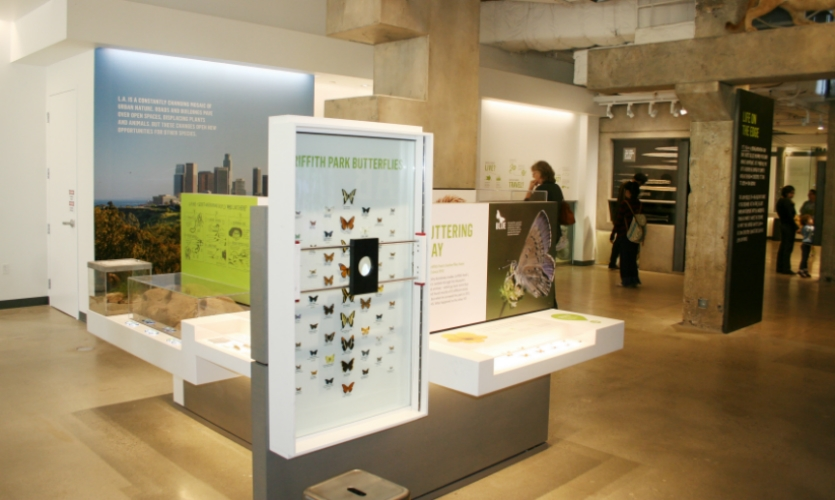 """Los Angeles is in a """"biodiversity hotspot,"""" and the exhibit is designed to encourage visitors to explore it."""