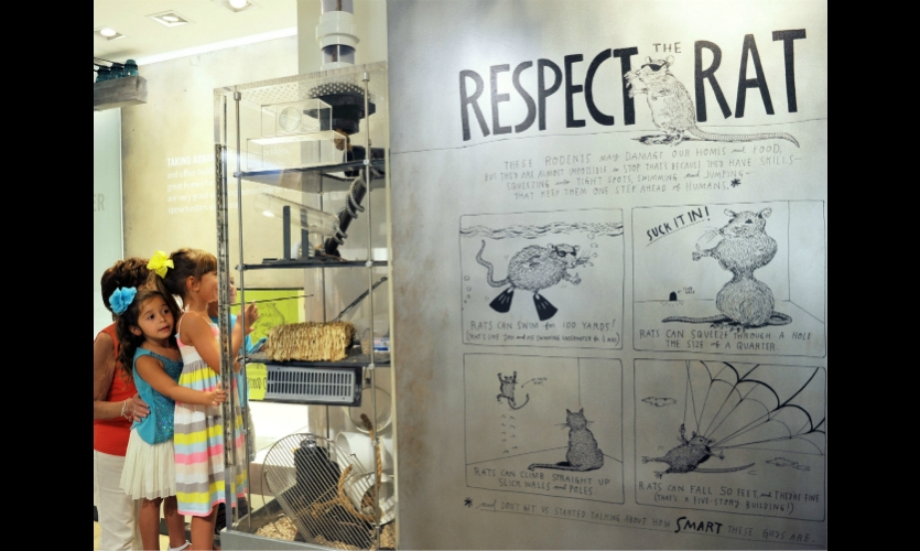 Engaging, kid-focused graphics motivate visitors to better understand and respect the animals living in their communities.