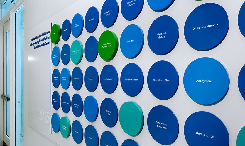 The thickness of donors discs distinguishes the categories and amounts of donations. (Names of donors have been intentionally altered at the request of PPNYC.)