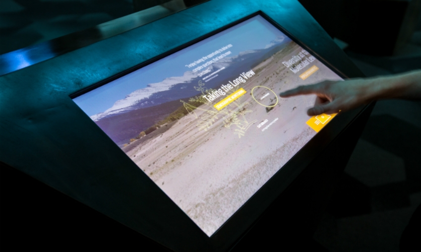 Interactive experiences connect visitors to the science and research efforts at the Gardens.
